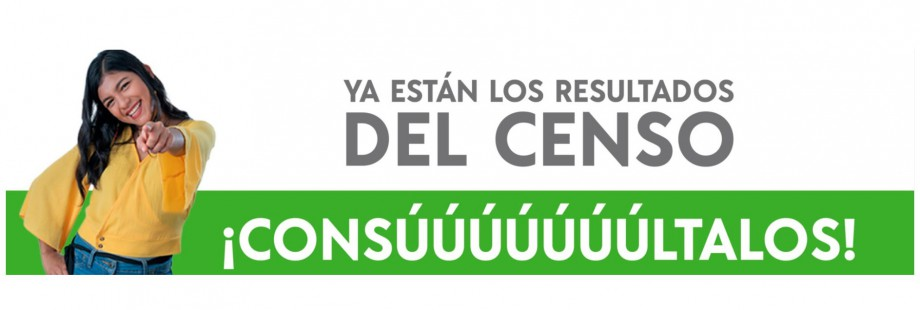Banner CENSO 2020